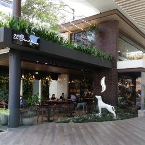 Cafe Barista (El Beneficio)