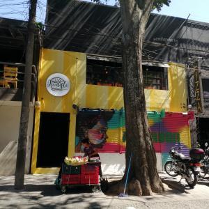 Jungle Burger Bar