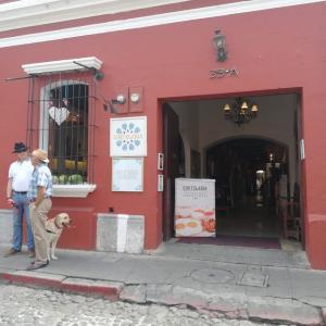 Guatelaria