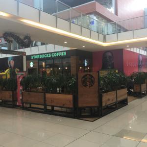 Starbucks (Multiplaza)