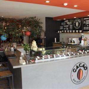 Cacao Bar Selection