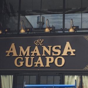El Amansa Guapo