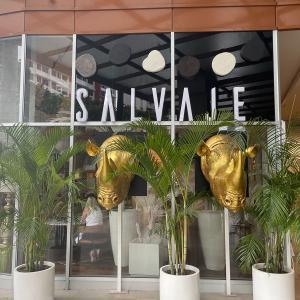 Salvaje (Costa del Este)