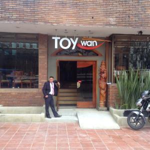 Toy Wan