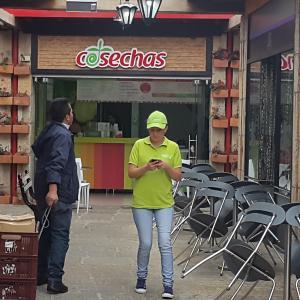 Cosechas (Santa Bárbara)