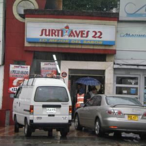 Surti Aves 22