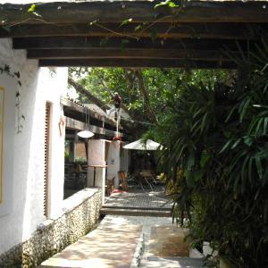 Faro el Jardin